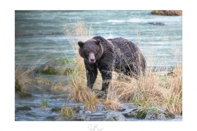 meilleurs sites de rencontre en Alaska uranium 238 datant